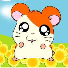 I had a Hamtaro Gamboy game, it was the best freaking game ever!