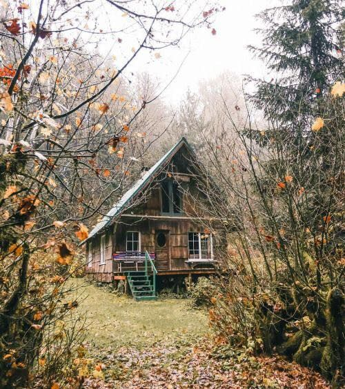 cabin in the woods...