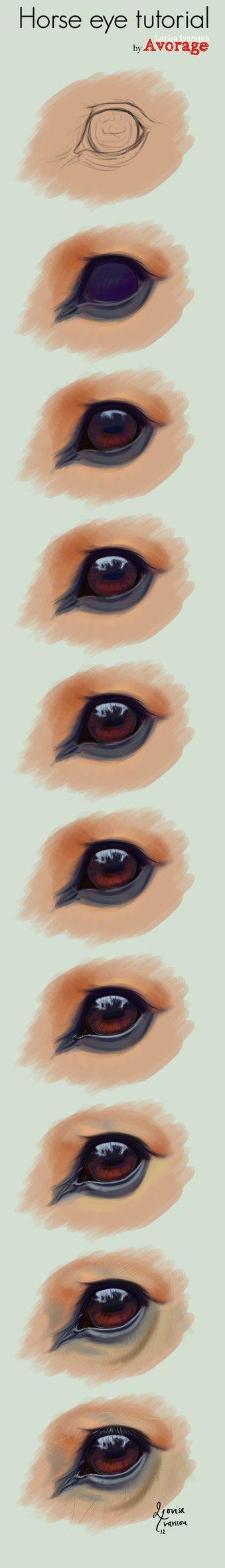 horse drawing tutorial horse eye