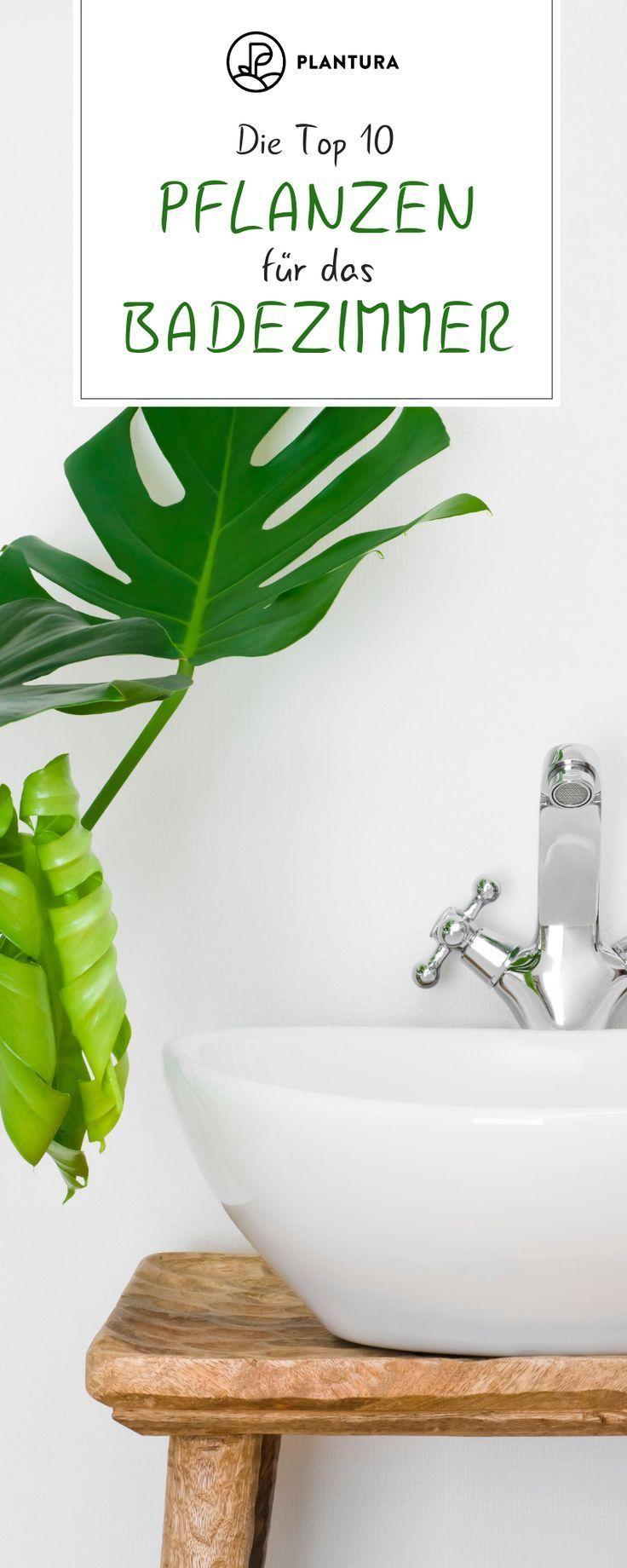 Pflanzen Furs Badezimmer Unsere Top 10 Badezimmer Furs Gesundepflanzenzimmerpflanze Pf Badezimm Pflanzen Furs Bad Pflanzen Badezimmer Ohne Fenster