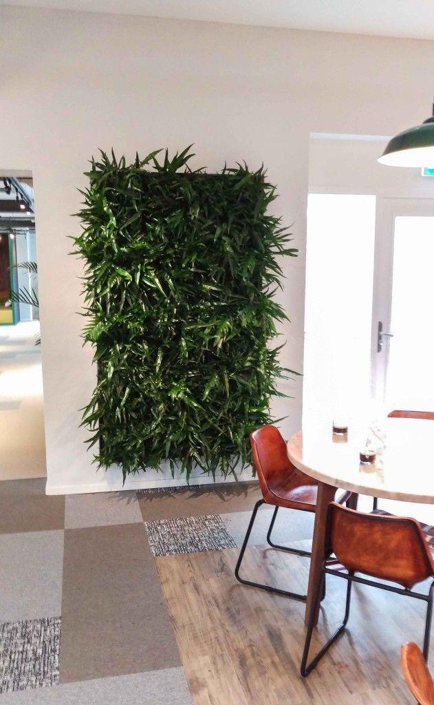 Een kleine greep uit onze ideeën ziet u hier. Meer inspiratie voor planten in uw…