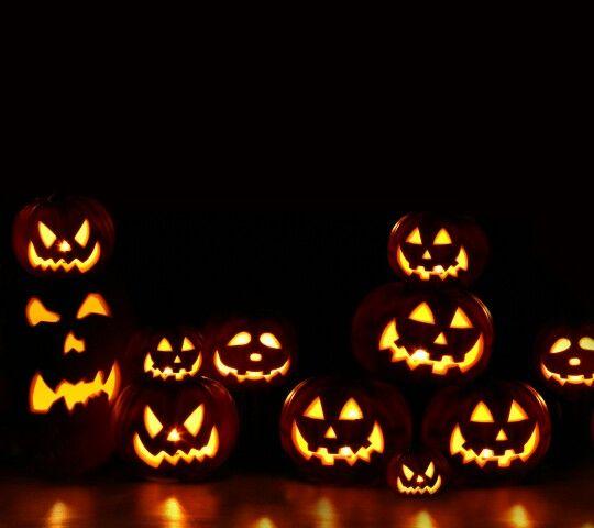 154 besten Halloween/Autumn Bilder auf Pinterest | Herbst, Kätzchen ...