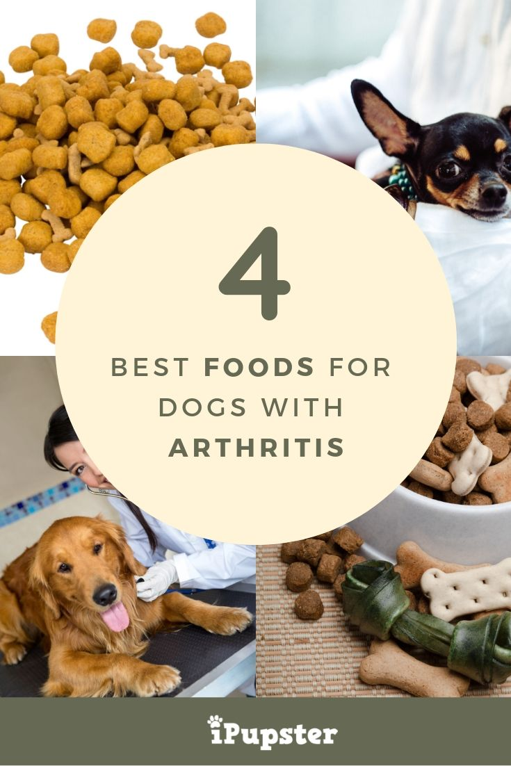 Arthritis Dog Food Reviews What Is The Best Dog Food For Joint