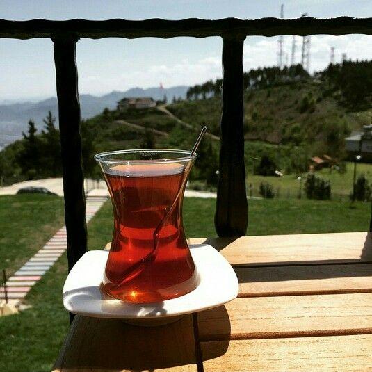 Bir bardak tavşan kanı çayla güne merhaba  #çaykeyfi #boztepe #ordu #karadeniz #türkiye #memleketordu #akamoy Fotoğraf@zcngns