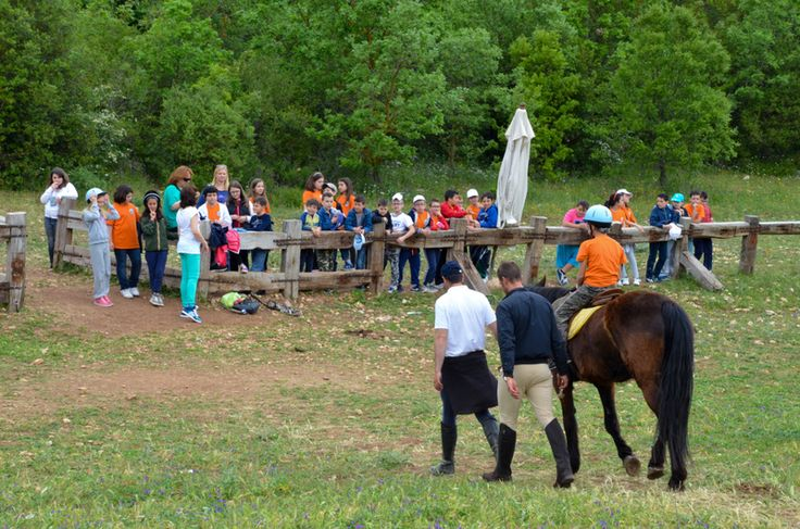 #Tourism #SportyTourism in #Puglia: #Approach and firs #HorsRiding