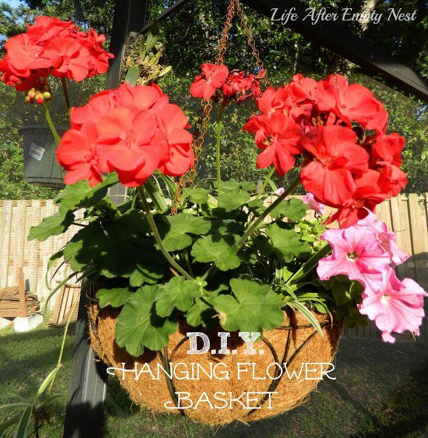 Best 25+ Hanging Flower Pots Ideas On Pinterest