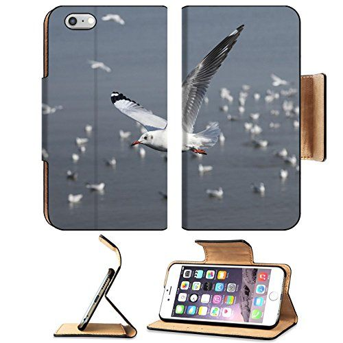 MSD Premium Apple iPhone 6 Plus iPhone 6S Plus Flip Pu Leather Wallet Case iPhone6 Plus IMAGE ID 35085988 Seagull flying at Bang Pu beach Thailand >>> Learn more by visiting the image link.