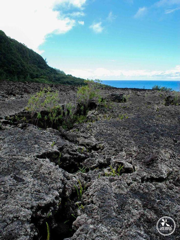 Route de la côte sauvage, coulée du volcan Piton de la fournaise, ile de la reunion
