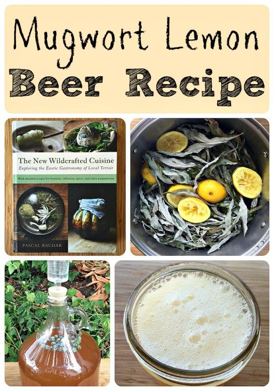 Mugwort Lemon Beer Recipe (plus a give*away!)