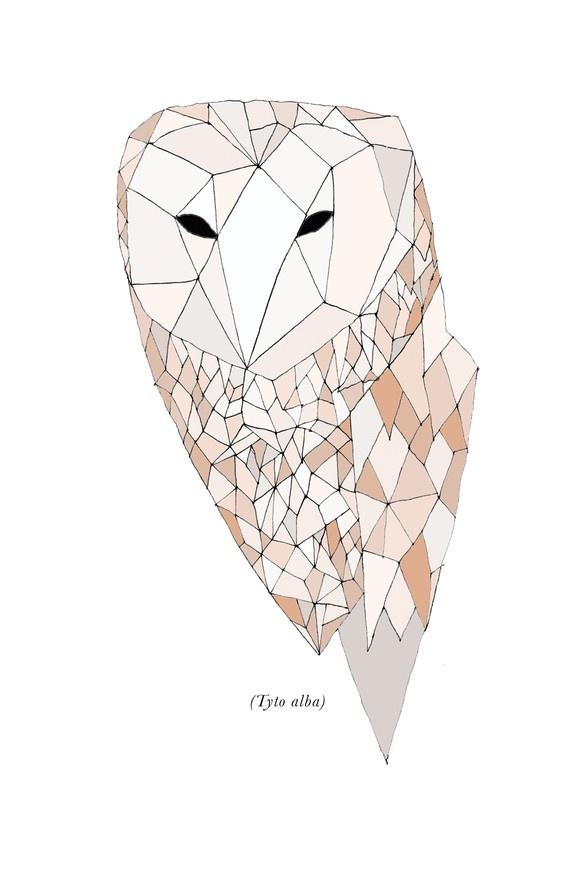 O Panda Pill geometric owl   Prints...