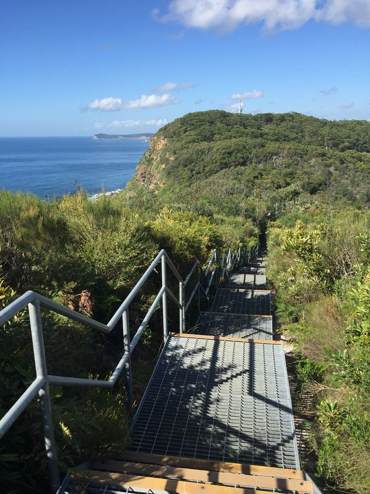 Crackneck Walk / Bateau Bay NSW Central Coast Australia