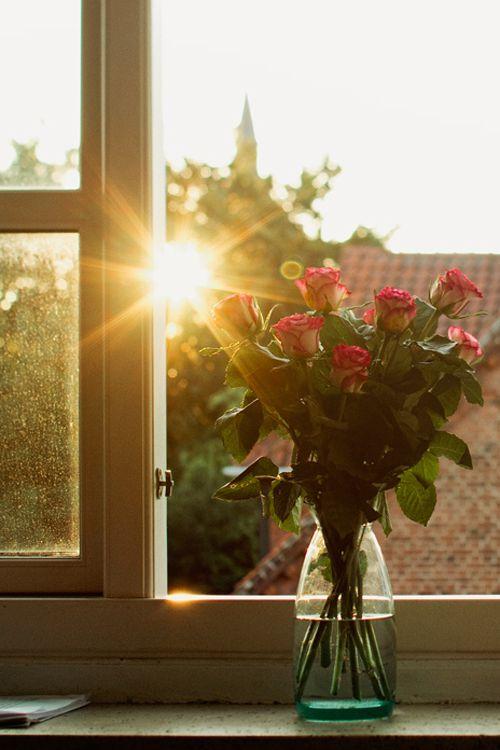 "plasmatics-life: ""The sun is but a morning star ~ By Julia Davila Lampe """
