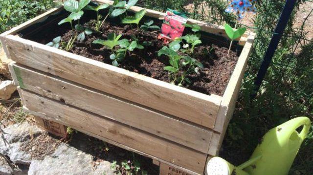 Diy cr er une jardini re avec une palette en bois - Fabriquer une jardiniere en bois de palette ...