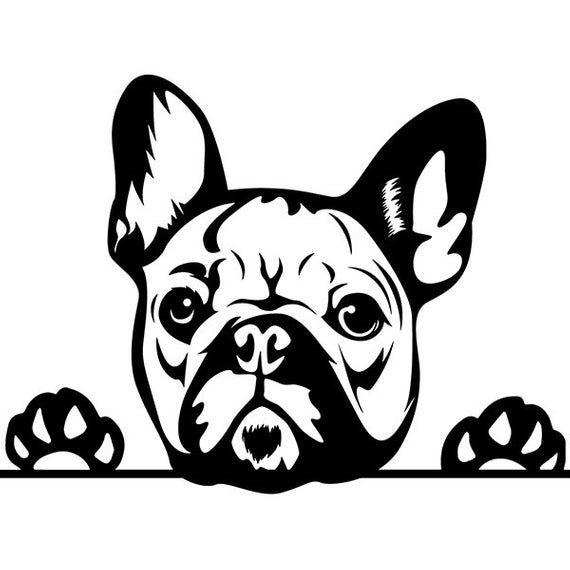 French Bulldog 29 Peeking Paws Cute Tongue Dog Breed K 9 Etsy French Bulldog Art French Bulldog Drawing Bulldog Art