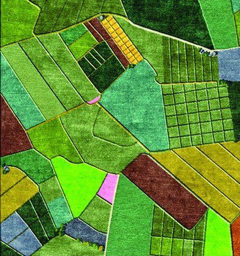 www.szonyeg-bolt.hu  szőnyeg, rug, carpet  Gyerekszőnyegek, shaggy szőnyegek, futószőnyegek, lábtörlők, szettek webáruháza. SARAY Szőnyeg Debrecen