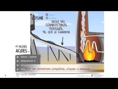 Animations (FR) | CDP