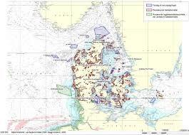 Danmarks koralrev beskyttes. (26-01-2010)  Otte nye områder af det danske hav er nu blevet beskyttet. I disse områder vil man kun kunne give tilladelse til projekter, som havvindmøller, gasledninger og råstofgravning.  Otte nye områder af det danske hav er nu blevet beskyttet. I disse områder vil man kun kunne give tilladelse til projekter, som havvindmøller, gasledninger og råstofgravning, hvis man kan dokumentere, at projektet ikke skader de boblerev, stenrev og marsvin, som områderne er…
