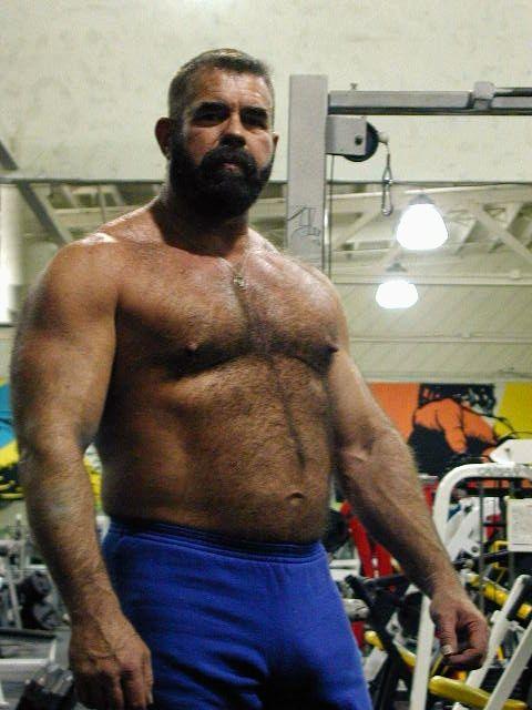 Gay Bear Bulge