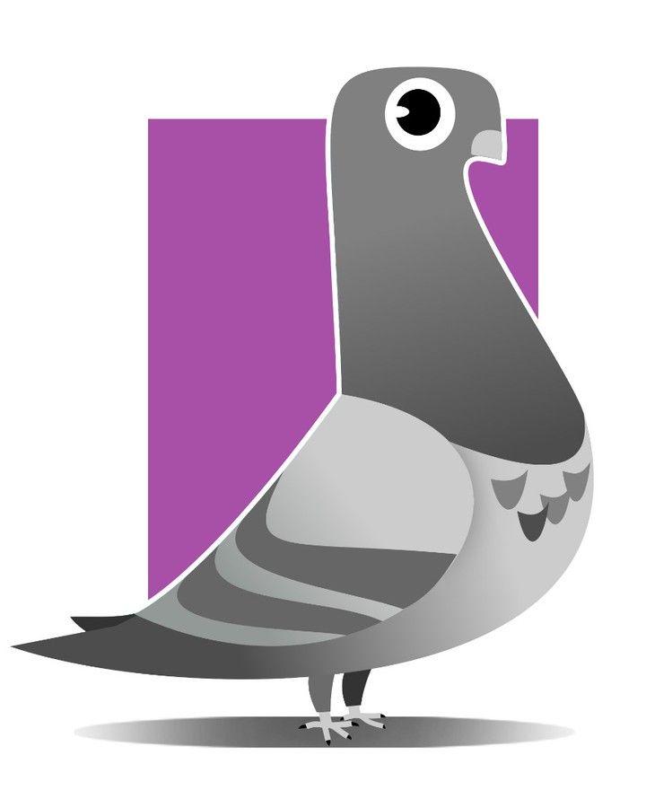 #pigeon #yolo