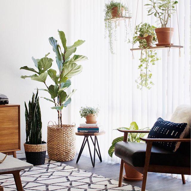 Un intérieur végétal / Green Home / Décoration végétale