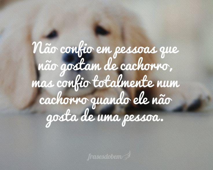 Não confio em pessoas que não gostam de cachorro, mas confio totalmente num cachorro quando ele não gosta de uma pessoa.