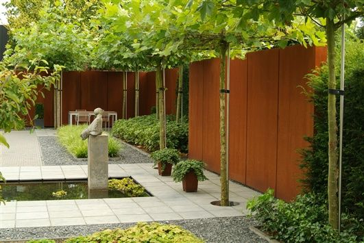 (London Planes are one of the trees pollarded (snubbed yearly) - so even though they are naturally large, here they an fit a narrow space.)COR-TEN STEEL FENCE and LONDON PLANE TREES
