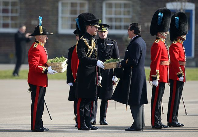 Prince William attends St Patrick's Day without Kate Middleton