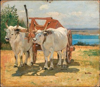 Giovanni Fattori (1825-1908) Bovi bianchi al carr