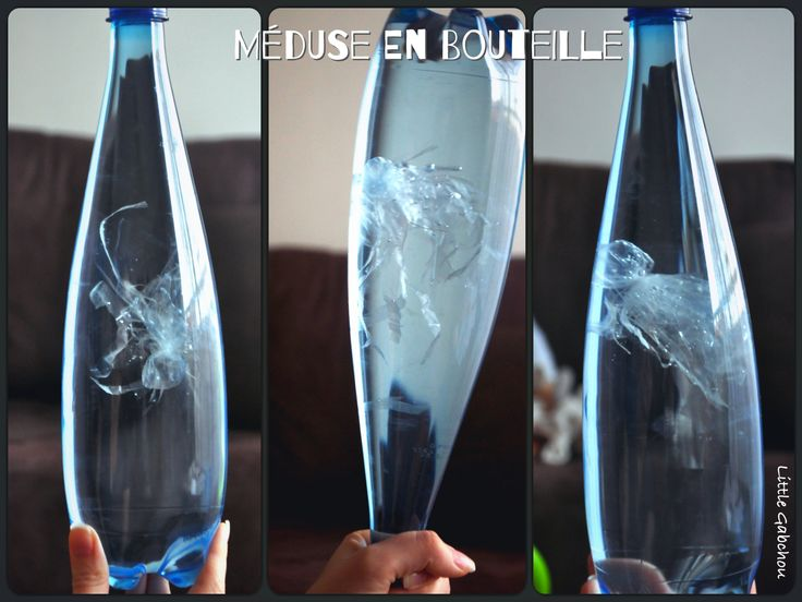 méduse en bouteille jellyfish in a bottle
