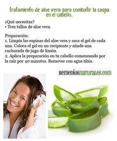 Tratamiento de Aloe Vera para combatir la caspa en el cabello ~ Remediosnatural.com
