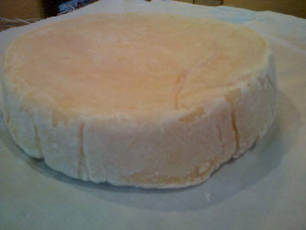 Queso de kefir madurado. INTRODUCIR EN SALMUERA.