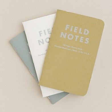 reflection paper on field notes from Notes need to be transformed into proper, well-written field notes, as soon as possible while impressions are still vivid (sanjek, 1990) the main advantage of this method is that it is the most economical option in terms of time and.