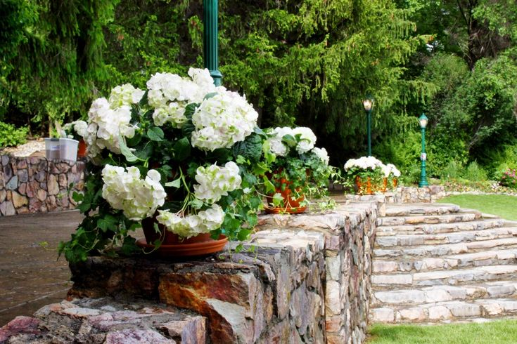 American Fork Amphitheater Event and Reception Center Wedding Venue American Fork Utah