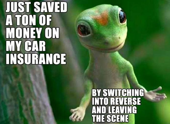 Funny Pic: Car Insurance Problems Solved! Funny Gecko Meme