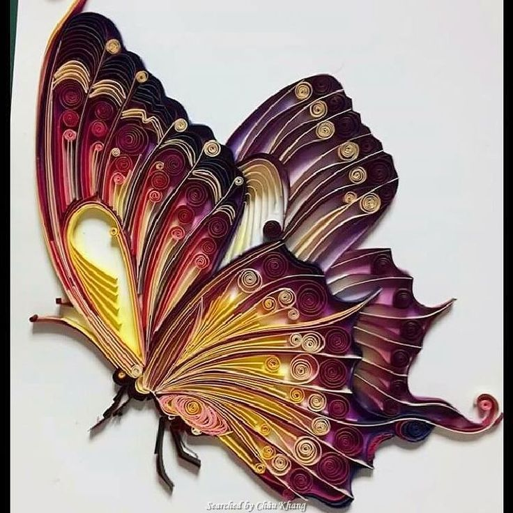 © tasarimperestt - Quilled butterfies pictures (Searched by Châu Khang)