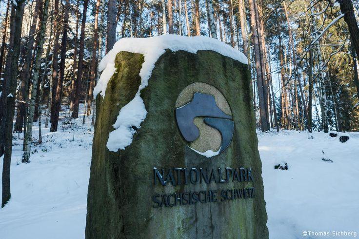 Willkommen im winterlichen Nationalpark Sächsische Schweiz