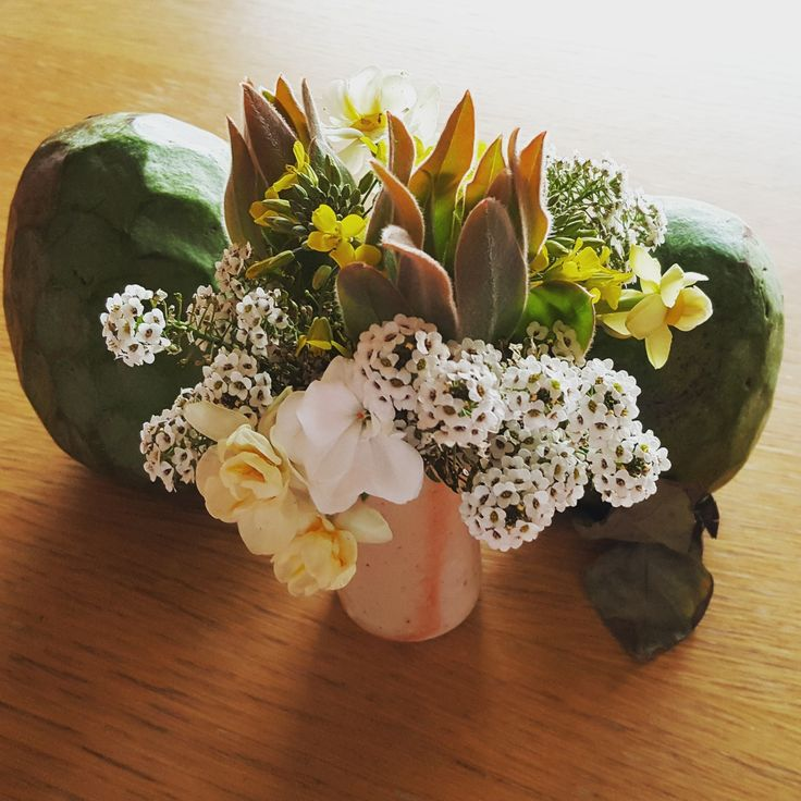 Weekly posy with custard apples - protea sprigs, narcissus, broccoli flower, geranium, alyssium
