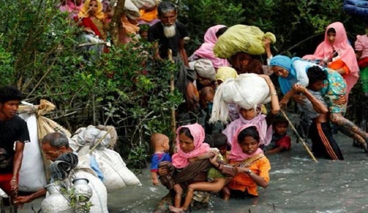 قناة الکوثر الفضائیة الأمم المتحدة تقول ان ضحايا الروهينغا أكثر من ألف.. والقس توتو يندد بالجريمة: اسيا والباسيفيك - الكوثر: الامم المتحدة…