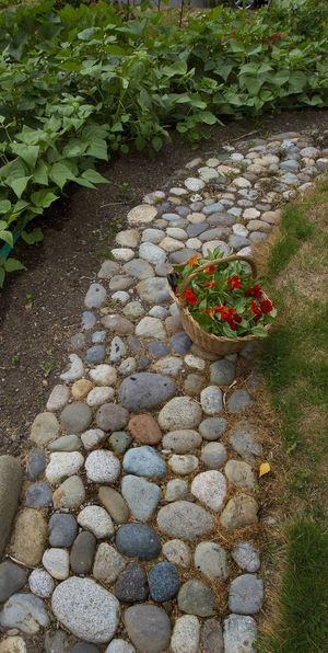 "Susan calls her husband, Scott, the ""cobble king"" for all the stones he collects to build pathways around the garden."