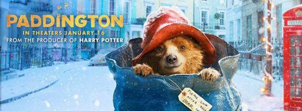 Paddington bear sexual position financial abuse: