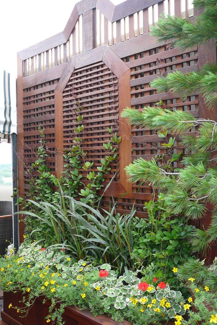 Un simple treillis? À la fois fonctionnel et esthétique, il nous met à l'abri du vent ainsi que des regard indiscrets, tout en étant un joli support à la vie végétale.