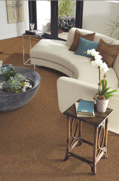 The luxurious plush tigressa cherish carpet is made from special nylon fibers that give it extraordinary softness combined with an amazing durability at an