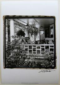 $20.99  Black AND White Photographic ART Print American Breeze IX BY Laura Denardo |