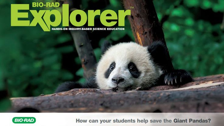 Can your students help save the dwindling Giant Panda population? Get a free downloadable Giant Panda infographic just for entering!