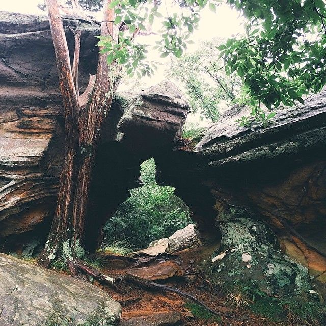 Swopes Had Another Take On The Garden Of The Gods In The Shawnee National  Forest.