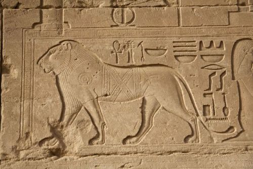 Barbary lion Relief depicting a Barbary lion,…