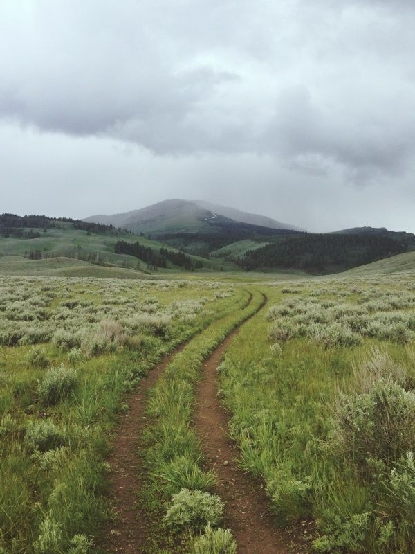 The possibilities... of the open trail. (Looks like it could be near Glimpse Lake)