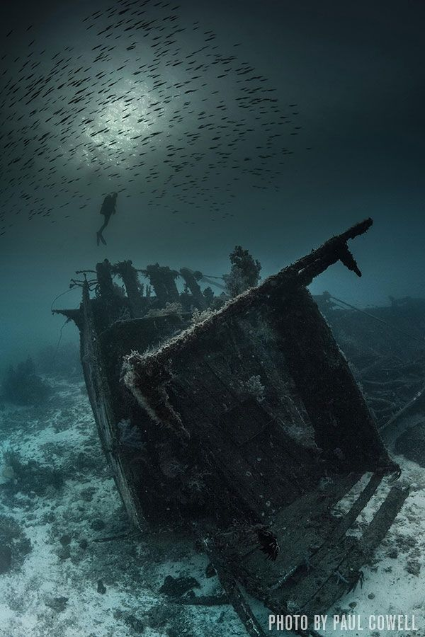 image-scu-photocontest-2014-paul-cowell-mysterious-wreck