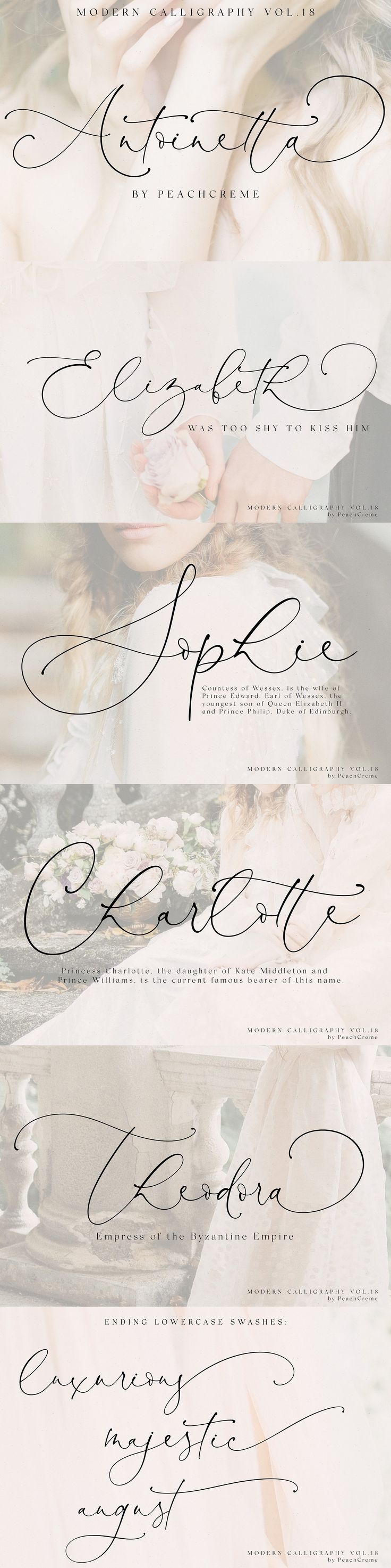 Antoinette // Moderne Kalligraphie №18 von PeachCreme auf Creative Market