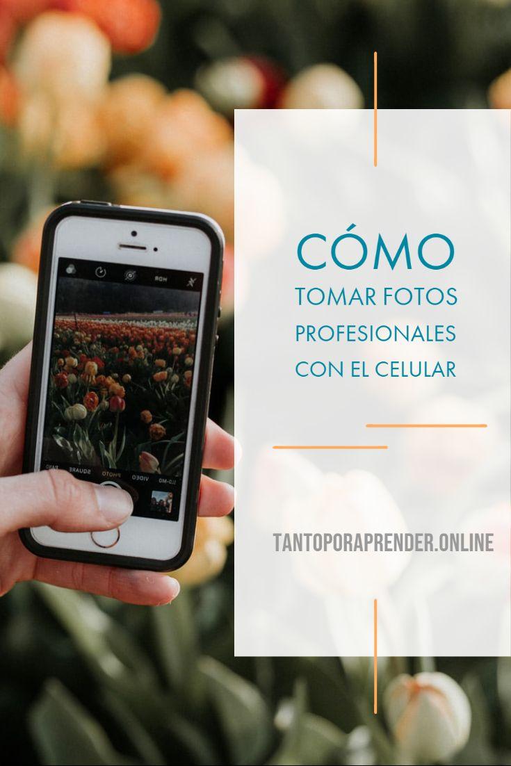 Cómo Tomar Fotos Profesionales Con El Celular Como Tomar Fotos Profesionales Fotos Profesionales Para Tomar Fotos